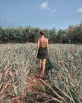 Koh Mak travel vlog